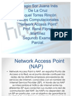 Network Access Point (NAP)