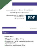 Algoritmo Genetico Simple