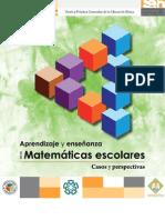 MATEMATICAS_REFORMA2011