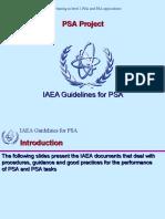 II1_1 IAEA Guidelines for PSA