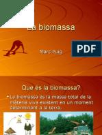 Energia de la Biomassa. Marc Puig
