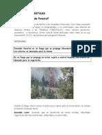A que llamamos Incendio Forestal[1]