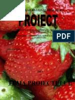 Dulceata de Capsuni Proiect