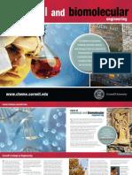 CBE Grad Brochure