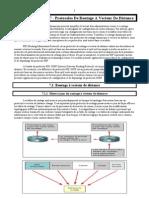 CCNA 2 - Module 07 - Pro Toc Oles de Routage a Vecteur de Distance