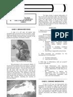 OS 213 RESP 1 #26 Pathology,bronhiectasis,bronchitis (33)