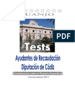 Ayudantes Recaudación Diputación de Cádiz Tests DEMO[1]