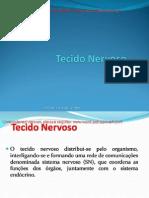Tecido Nervoso (Profª Maria Paula)