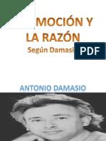 EMOCION SENTIMIENTOS RAZON