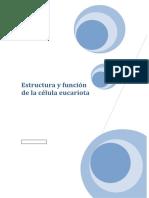 EUCARIOTA-Resumen