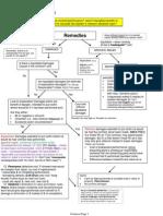 Remedies Flow Chart