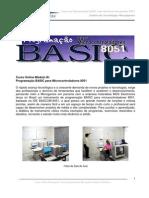 Conteudo Programatico Basic 20082009