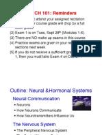 Module 4 Neural Systems(1)
