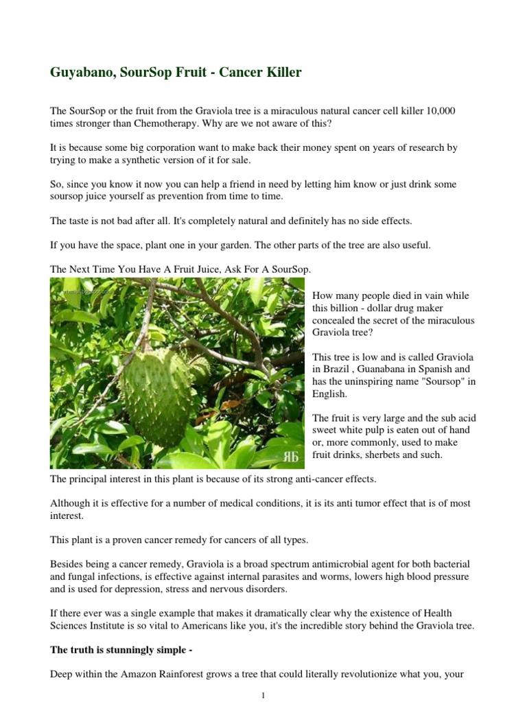 Graviola (Soursop Fruit) : CANCER KILLER   Cancer   Chemotherapy