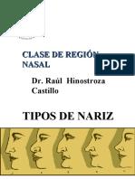 Region Nasal
