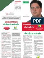 Programa Electoral IU
