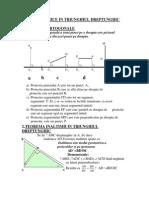 Relatii Metrice in Triunghiul Dreptunghic