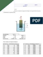 Fisica II Informe N°3