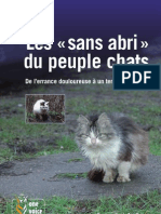 Rapport ChatsSansAbris 2010 4e