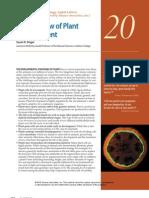 Developmental Biology 8e Ch20