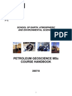 PetroleumMSc2008