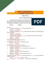 Mica Gramatica Franceza