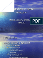 Lecture 1, Introduction to Dental Anatomy