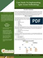 Global Delivery Model -  Agile Scrum Methodology