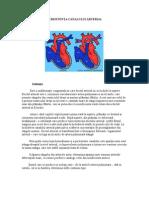 Persistent A Canalului Arterial