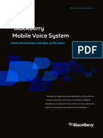 MVS Brochure Blackberry
