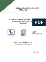 Programa Maestro Tilapia Tabasco[1]