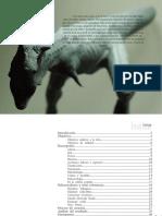 proyecto carnotaurus