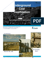 Wolf Bruining Underground Coal Gasification
