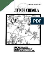 chinola cultivo (Dominicana)
