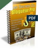 Les Secrets Du Blogueur Pro