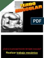 Histo Sem 5 Muscular