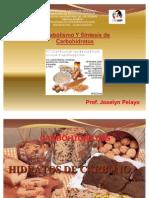 Metabolismo de Los Carbohidratos 2011. Prof. Josy