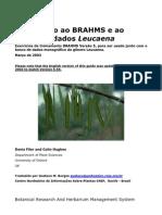 Manual Brahms