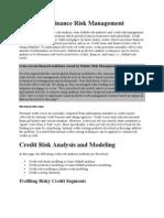 Credit and Finance Risk Management