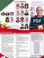 TRÍPTICO RESUMEN PROGRAMA ELECTORAL SANTA FE EL JAU Y PEDRO RUIZ  MUNICIPALES 2011