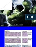 muscle power ppt