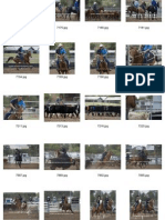 Team Penning Low Res Draft Proofs