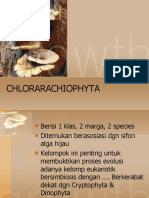 chlorac