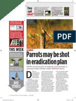 Parrots may be shot in eradication plans, 4 May 2011
