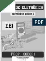 eb1_2009