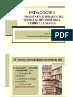 Curs 9 PedagogieI Mata