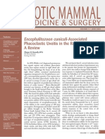 AEMV Journal of Exotic Mammal Medicine and Surgery_June03