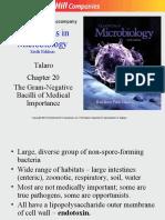 The Gram-Negative Bacilli of Medical Importance