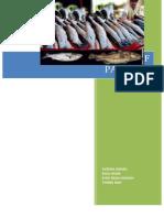 Fishing Industry of Pakistan