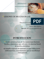 Expo Protesis Lesiones Mucosa Bucal